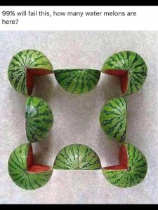 watermelonsquizorg